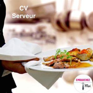 CV serveur